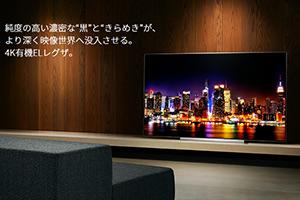 """关于""""REGZA""""东芝电视"""